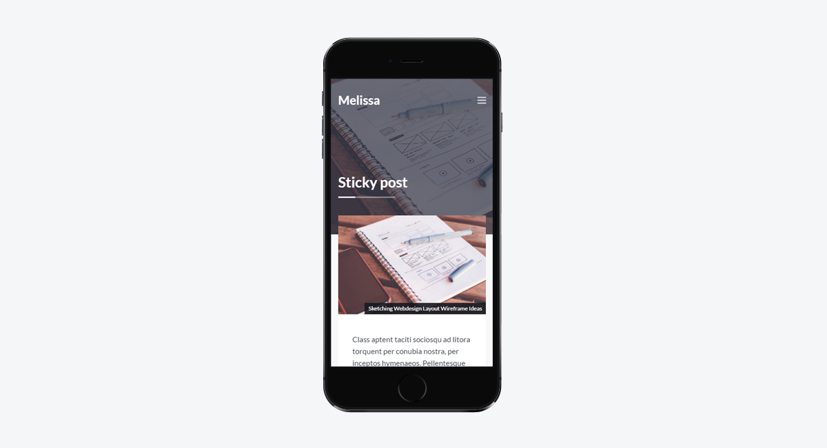 Melissa - Personal Blog/Magazine WordPress Theme / Mobile